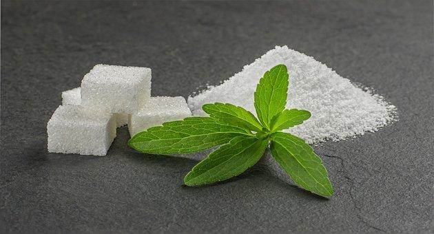 stevia final